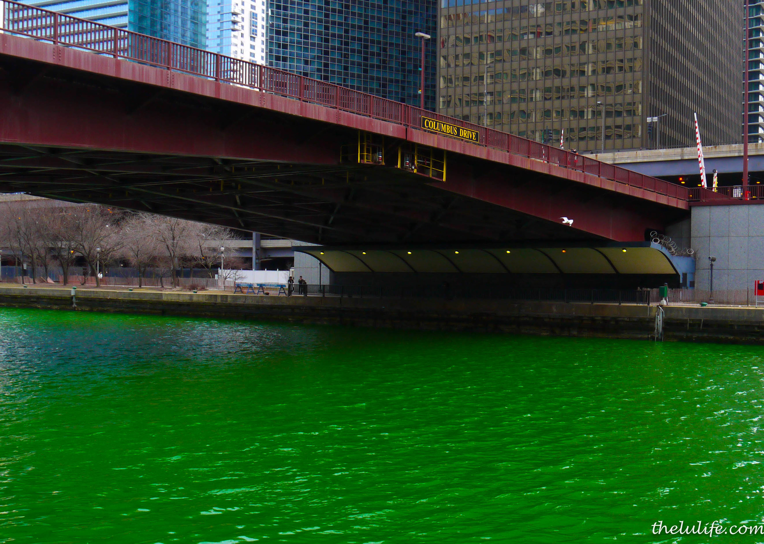 Figure 2c. I captured the river in just the right light - it was as green as a leprechaun!