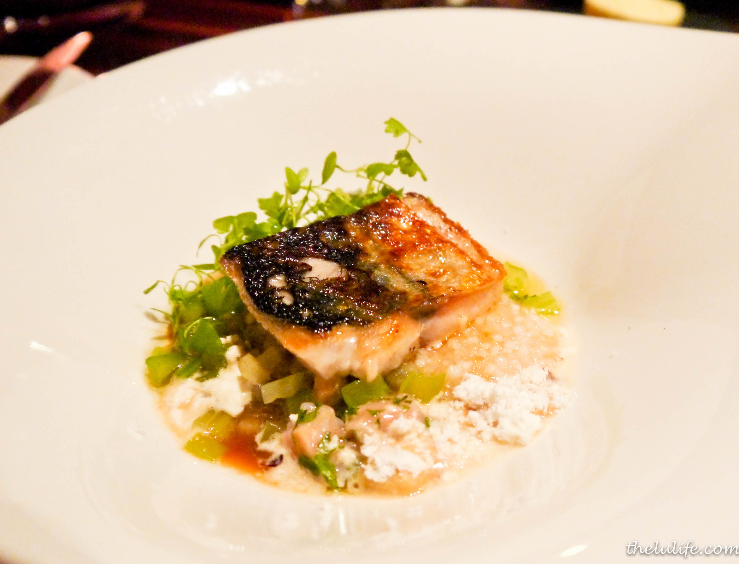 Grilled mackerel and tartare with hazelnuts, apple tapioca, celery and miso