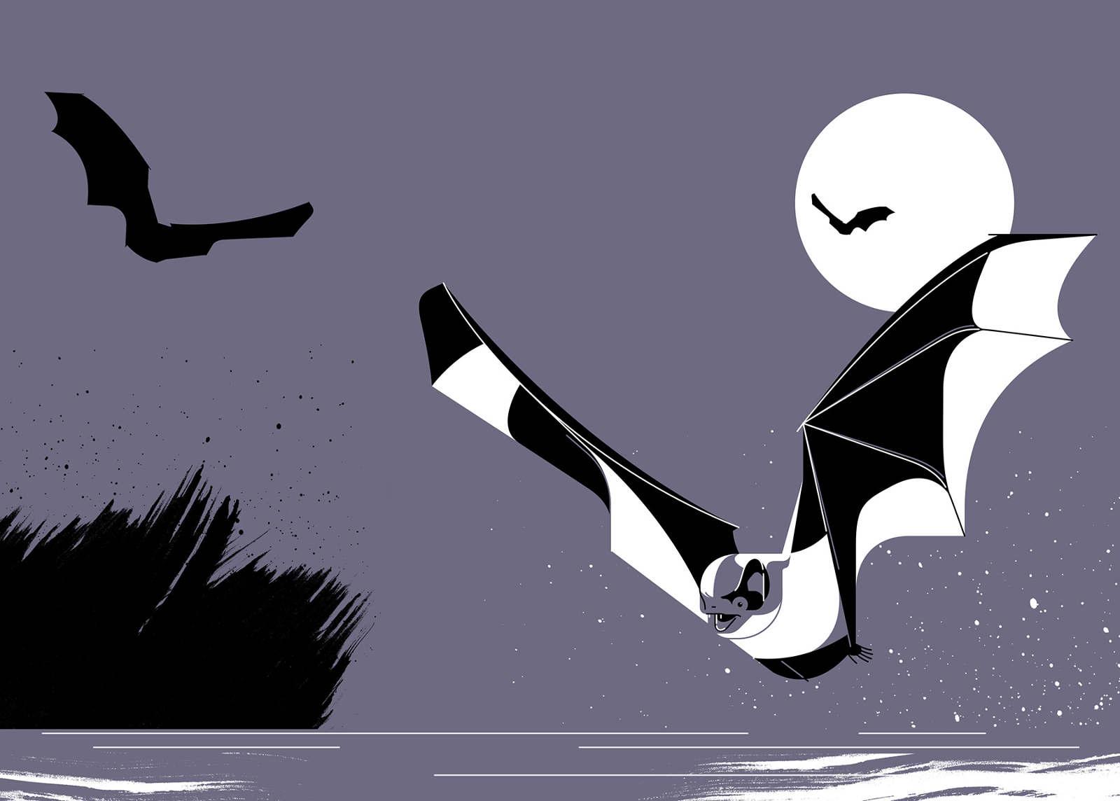 Water Bat, Waterfront Issue 2
