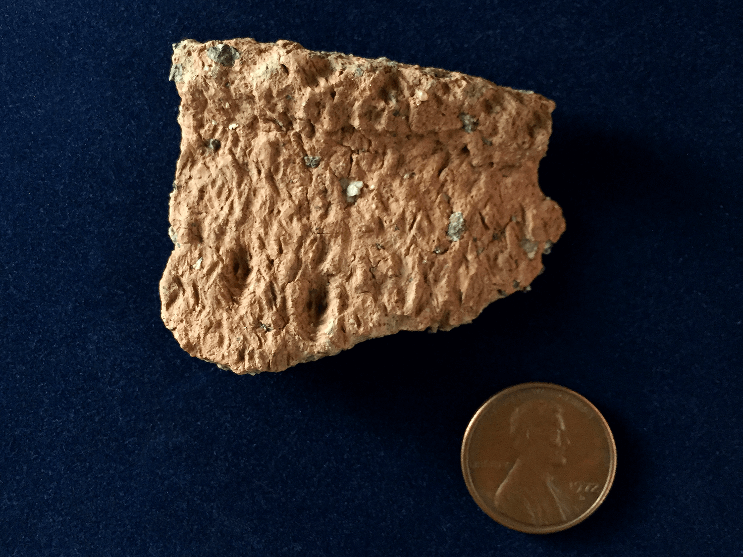 This Anishinaabek pottery sherd was found on Sleeping Bear Point.