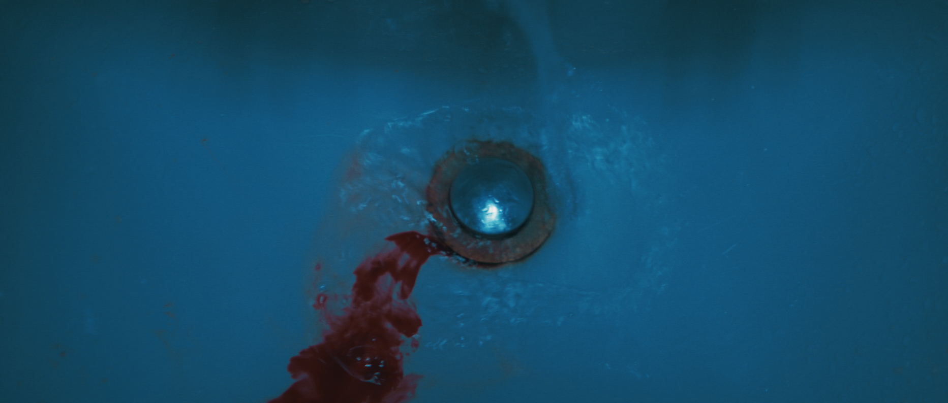 1-CCL_Gretchen_Blood down drain.JPG