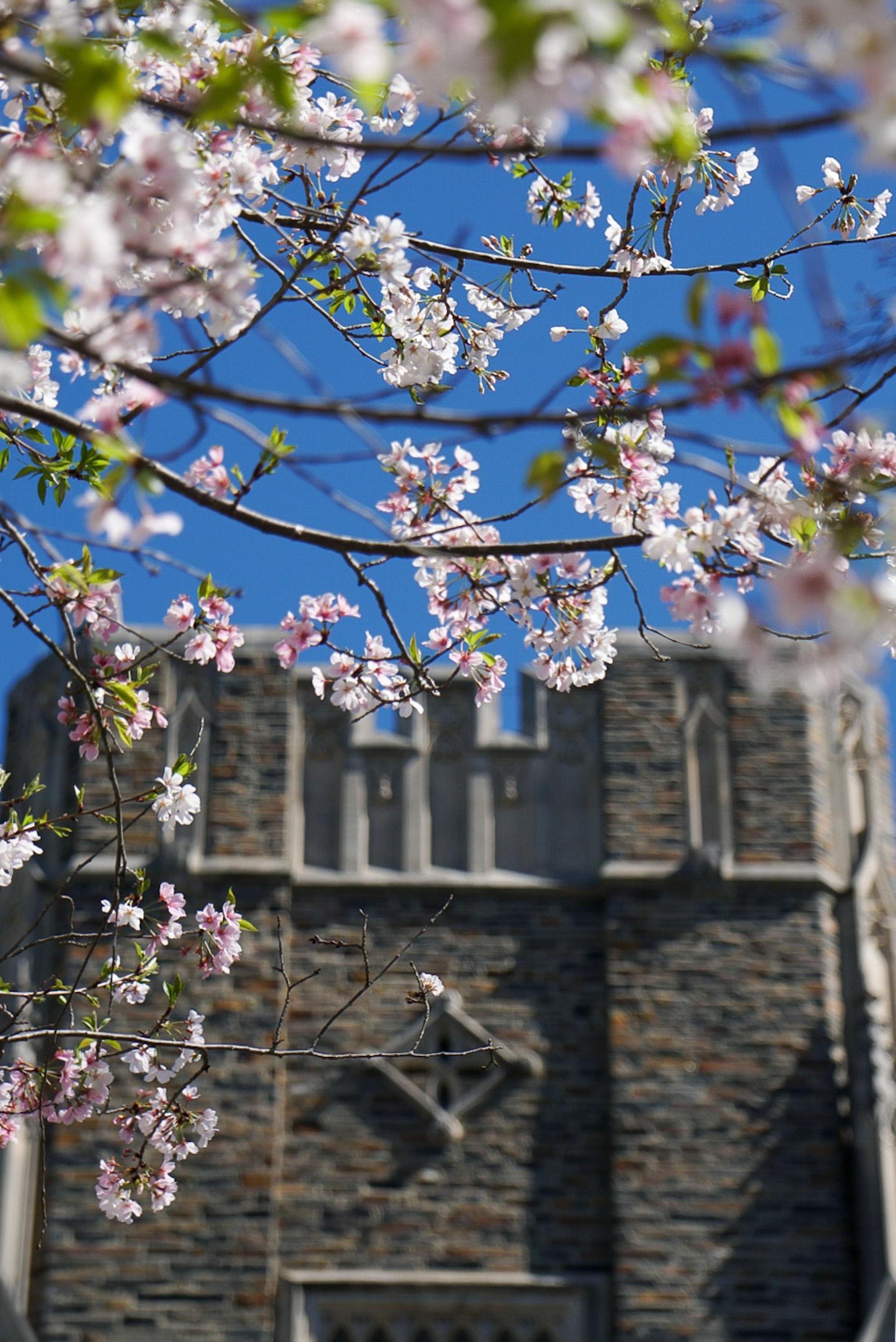 Duke University - Durham, NC