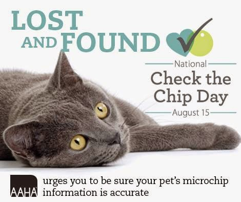 check-your-pet-microchip
