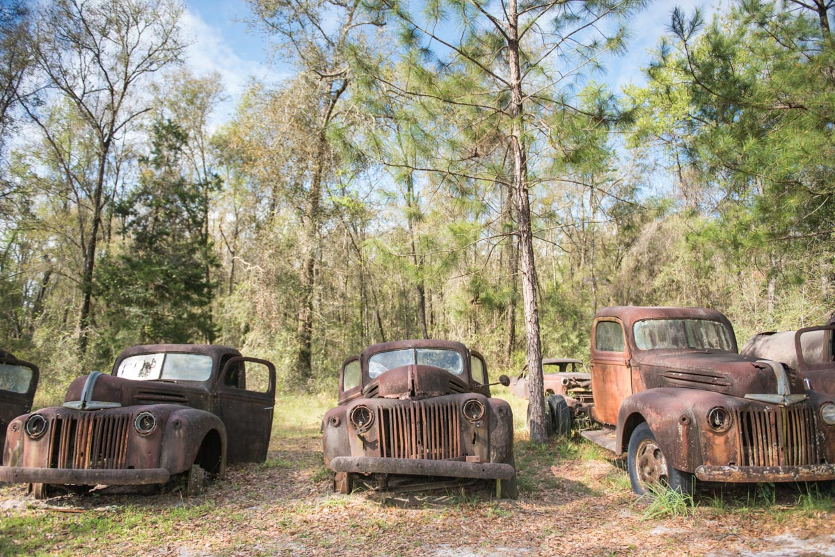 Florida | Ford Truck Graveyard