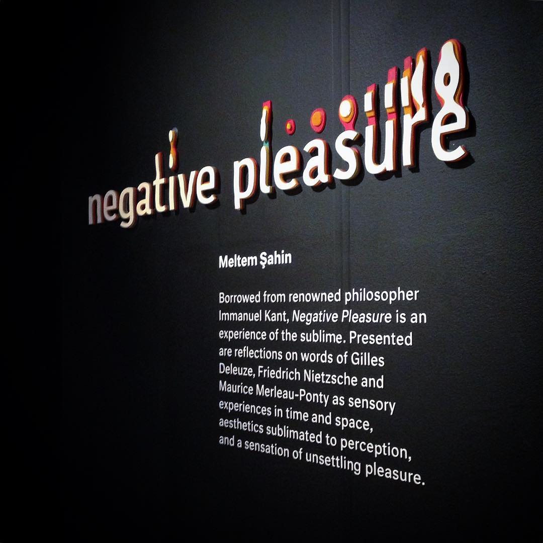 """Negative Pleasure"" is a term that is created by Immanuel Kant. He describe this outrage as: ""A turmoil of emotion or vibration between pains rising from inadequacy of all sensible standards and pleasure emanating from correspondence with rational ideas."""