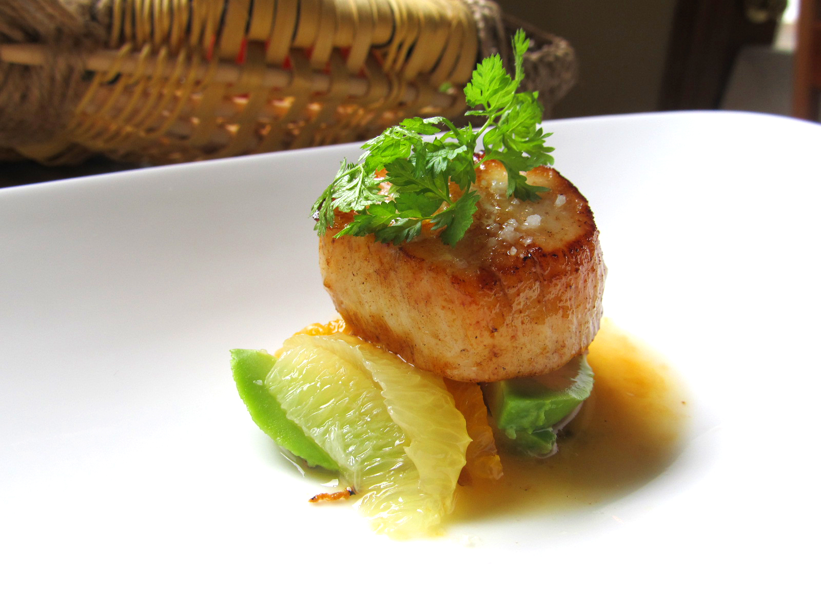 Scallop with Citrus and Avocado2.jpg