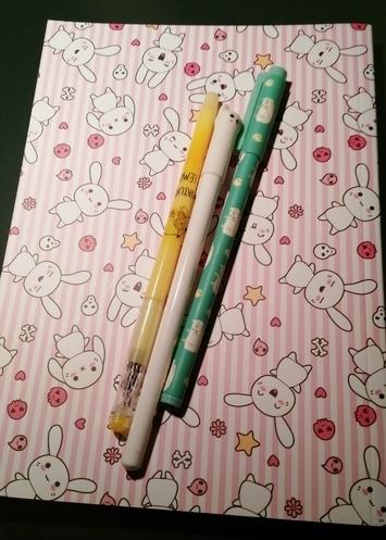 Detalle de libreta y bolígrafos comprados