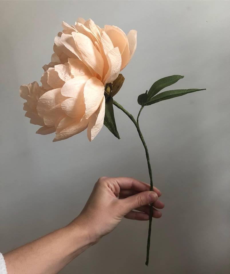 Peach Peony -  Fine Art of Paper Flowers - Tiffanie Turner