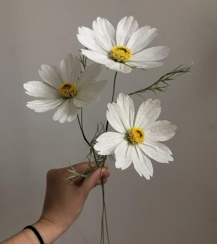 White Cosmos Flowers-  Tiffanie Turner - Fine Art of Paper Flowers