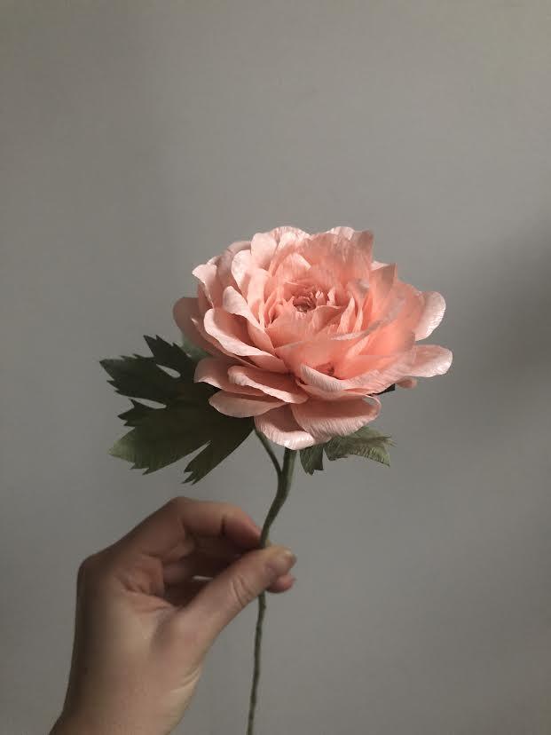 Ranunculus Rose - Pink -  Tiffanie Turner - Fine Art of Paper Flowers