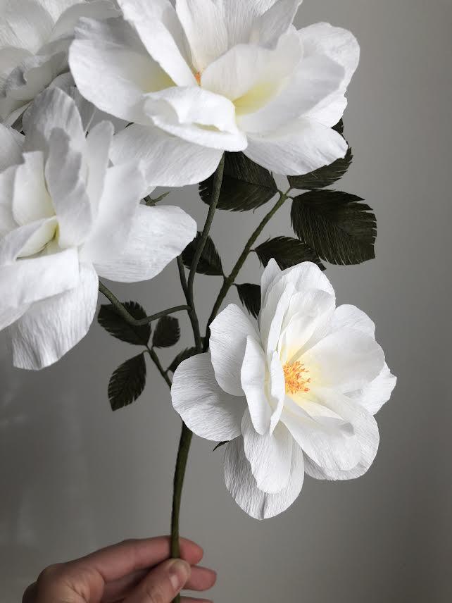Floribunda Rose Branch - White -  Fine Art of Paper Flowers - Tiffanie Turner