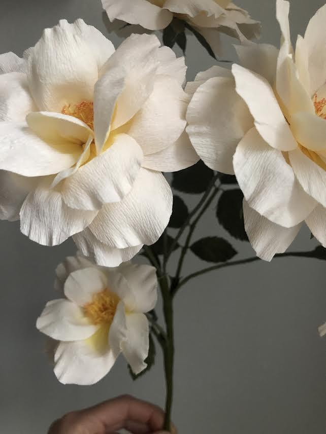 Peach Floribunda Rose Branch - Peach -  Fine Art of Paper Flowers - Tiffanie Turner