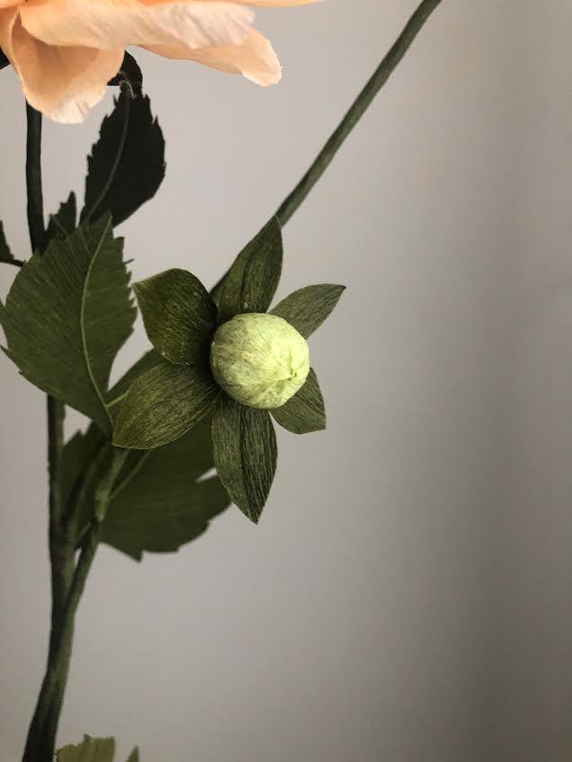 Dinnerplate Dahlia -  Tiffanie Turner - Fine Art of Paper Flowers