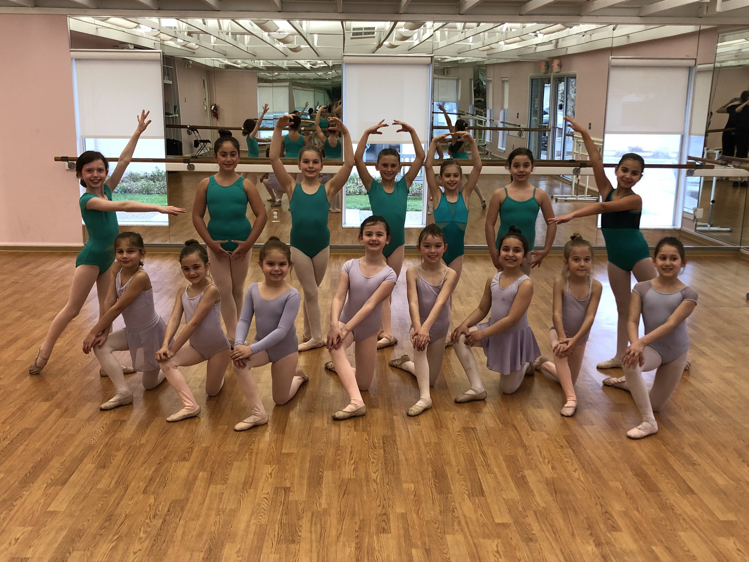 2018-2019 Pre-Professional Ballet Levels 1 and 2