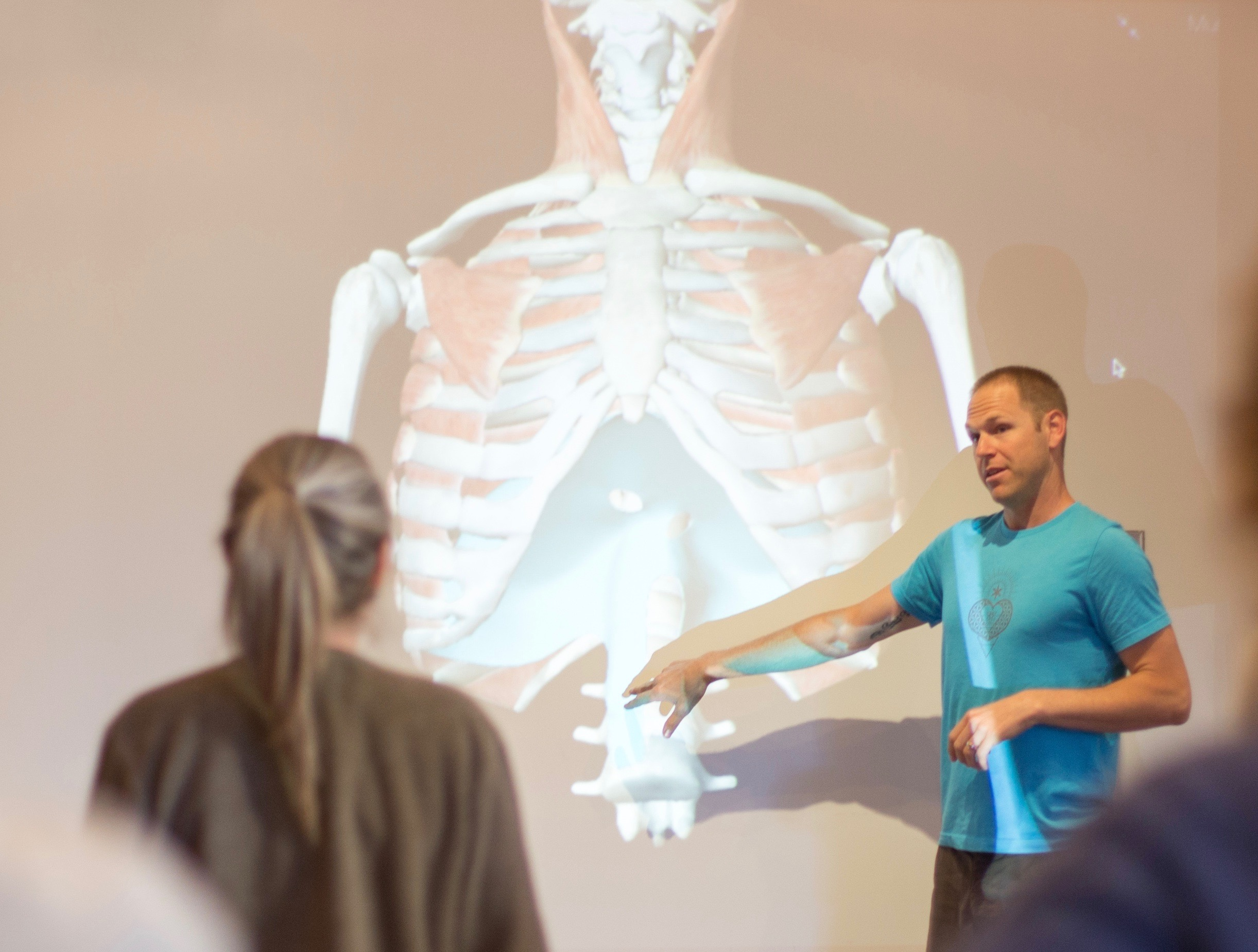 AnatomySense Training & Mentorship