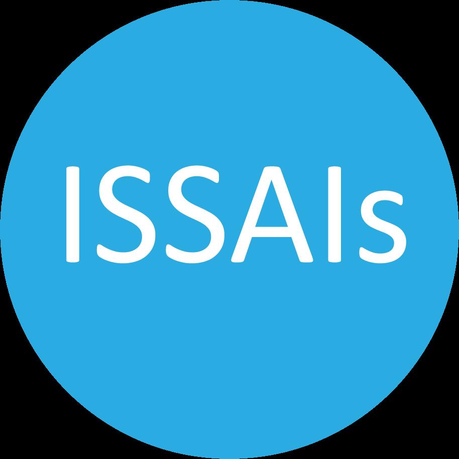 Financial ISSAIs