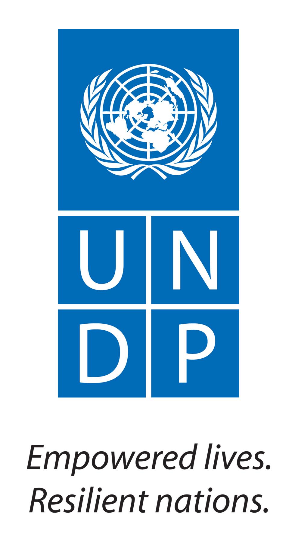 UNDP_Logo_Medium.jpg
