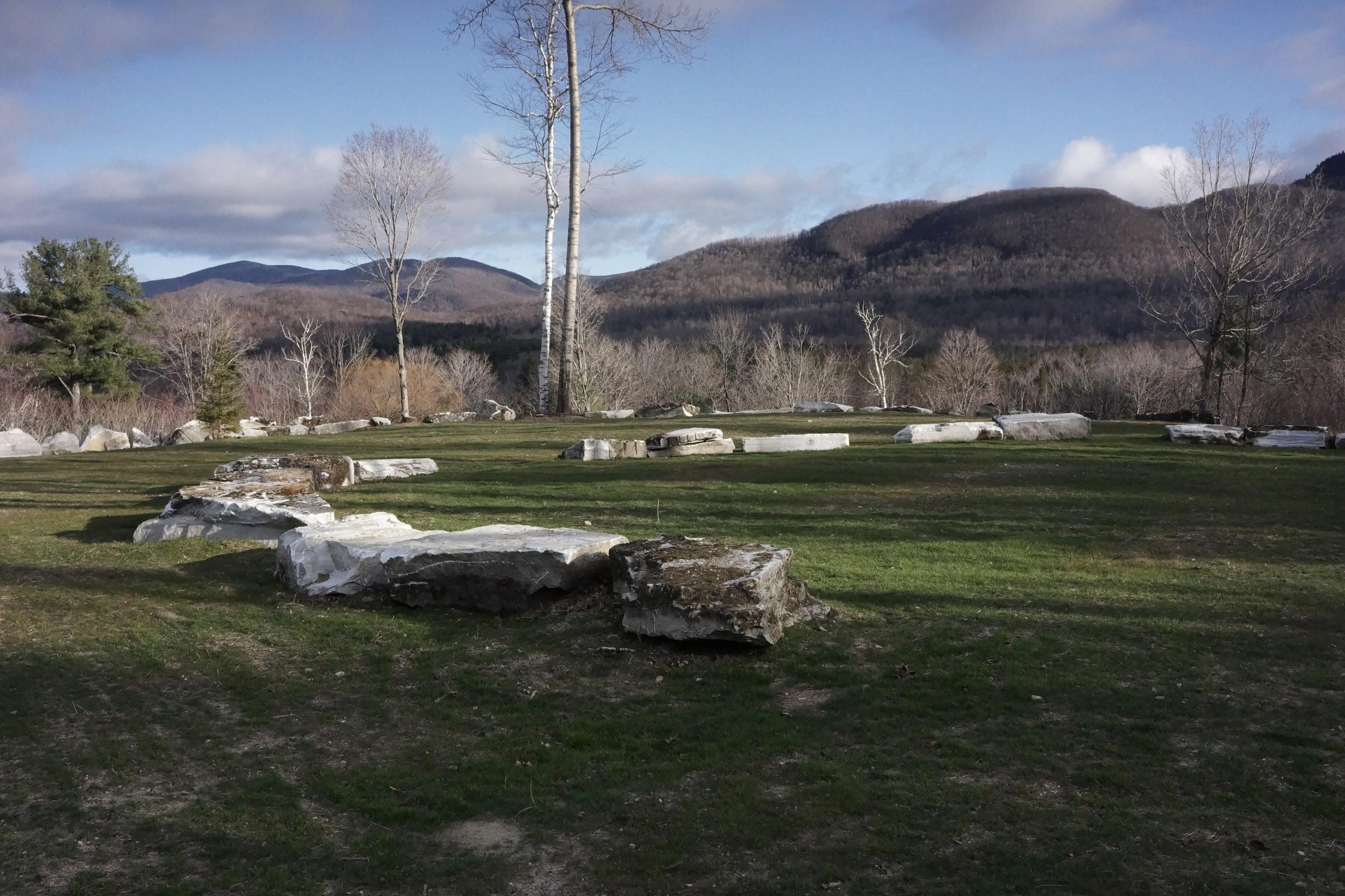 Field with rocks.JPG