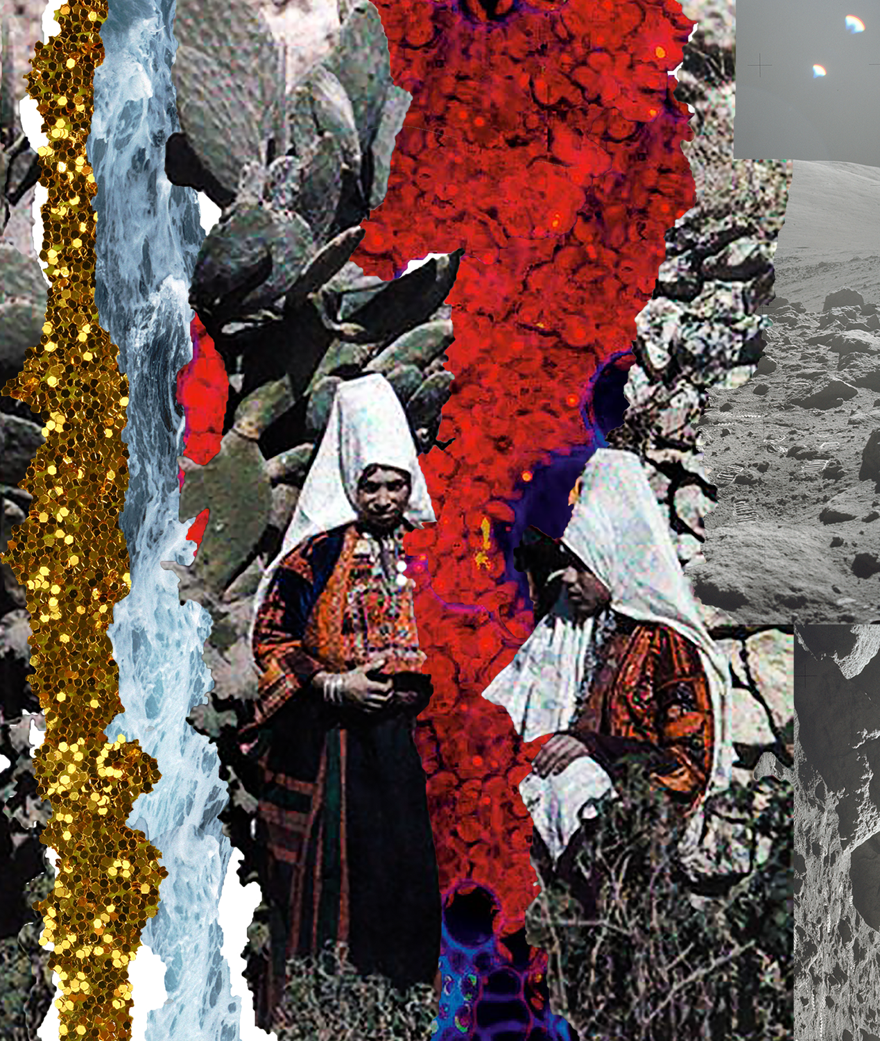ZainaAlsous_anamnesis_digitalcollage_2016.png