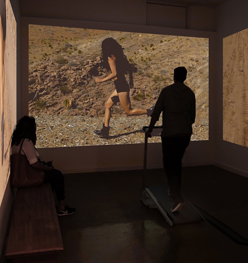 Ibarra's interactive treadmill and video installation invites the viewer to cross the border in tandem with her via video. The viewer must walk on the treadmill in order for the video to play. The video captures Xandra Ibarra running on the Rio Grande/Rio Bravo and various locations in the Chihuahuan desert between the United States and Mexico on the border of El Paso/Juarez