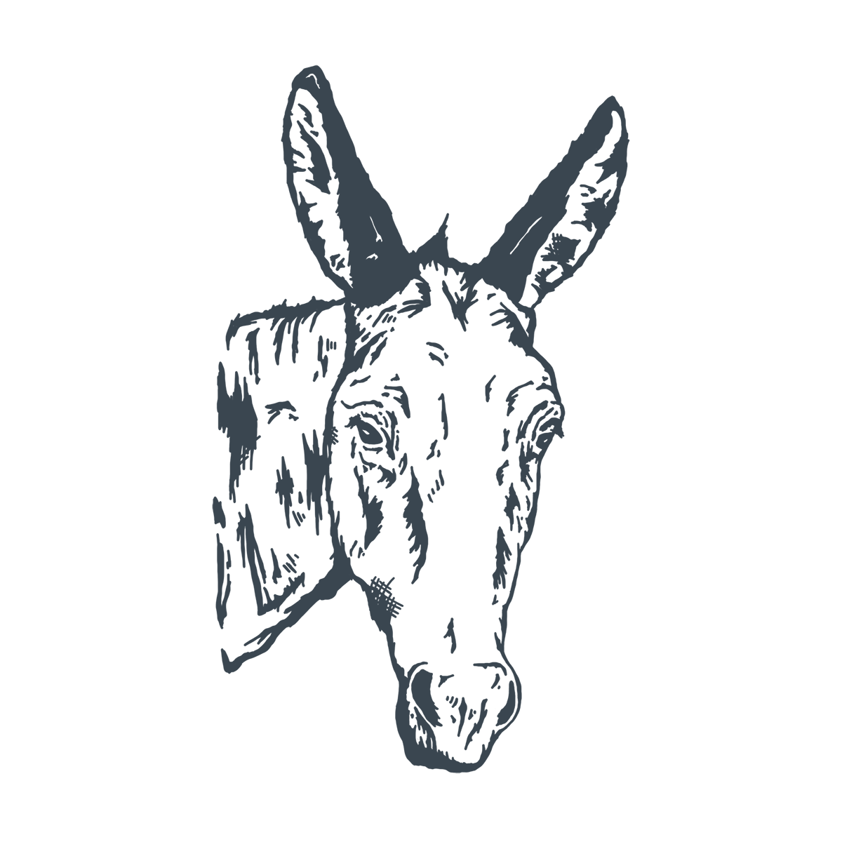 donkey-01.png
