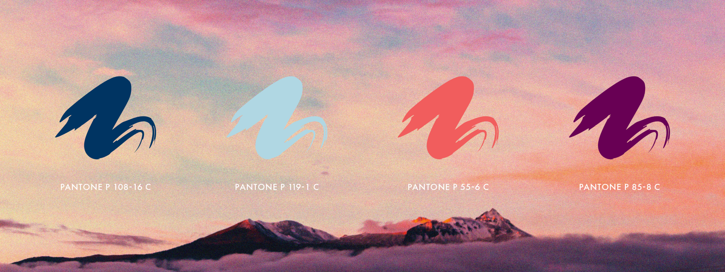 Branding-Imagery-Colors.png