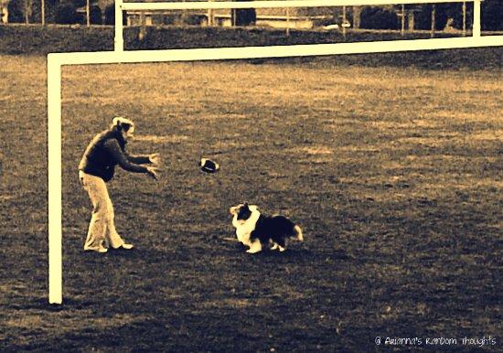 sable football