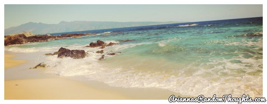 water's_edge.jpg