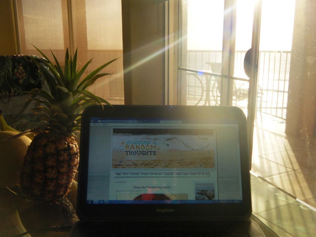 Back where my blogging journey began. (c) Arianna Merritt