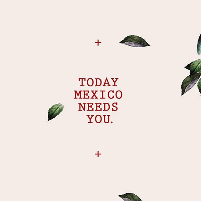Today for Mexico 🇲🇽🙏🏻We will be accepting donations at our location in Little Italy 1502 India Street, San Diego CA 92101 from 7am to 3pm Monday to Friday. What you can donate: -Pillows -Blankets -First Aid Kits -Dog Food -Construction Helmets & Gloves.  #mexico #mexicostrong #prayformexico #littleitalysandiego #littleitalysd #sandiego