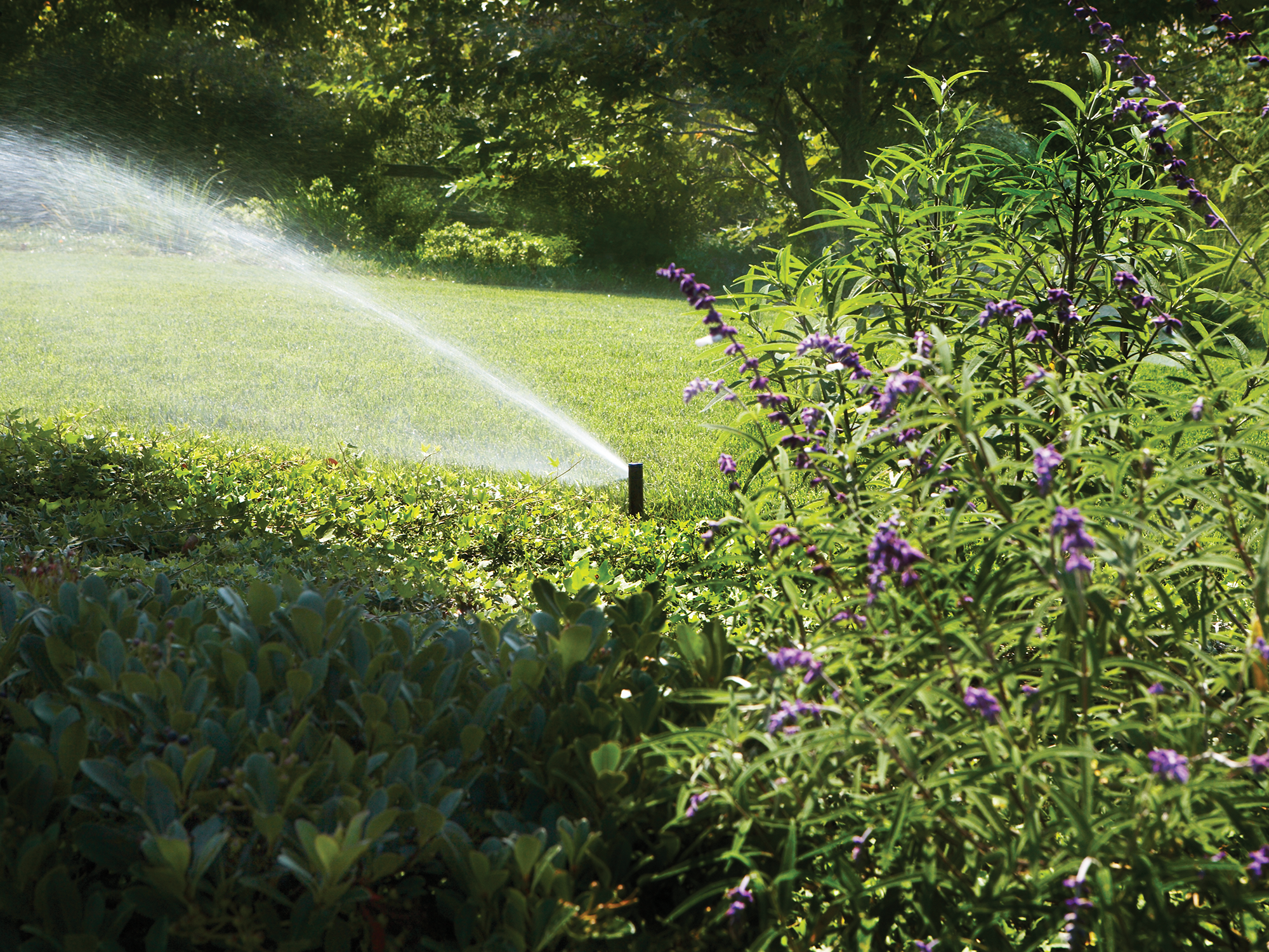 OUR EXPERIENCE - Over 28 years experience in design, installation and maintenance of irrigation systems.
