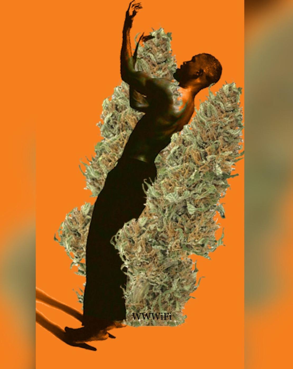 Review: Tangerine Dream
