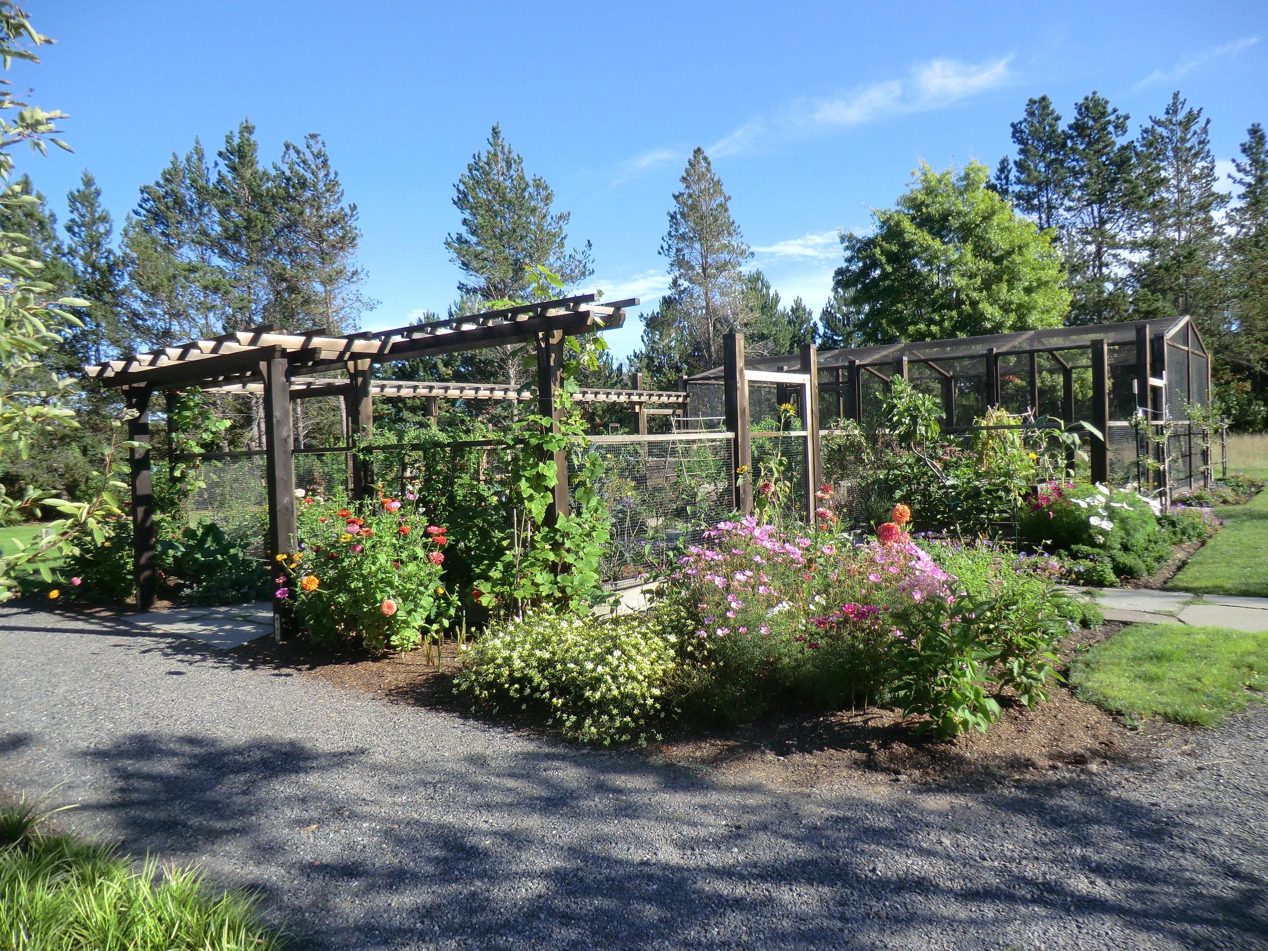 good garden.JPG