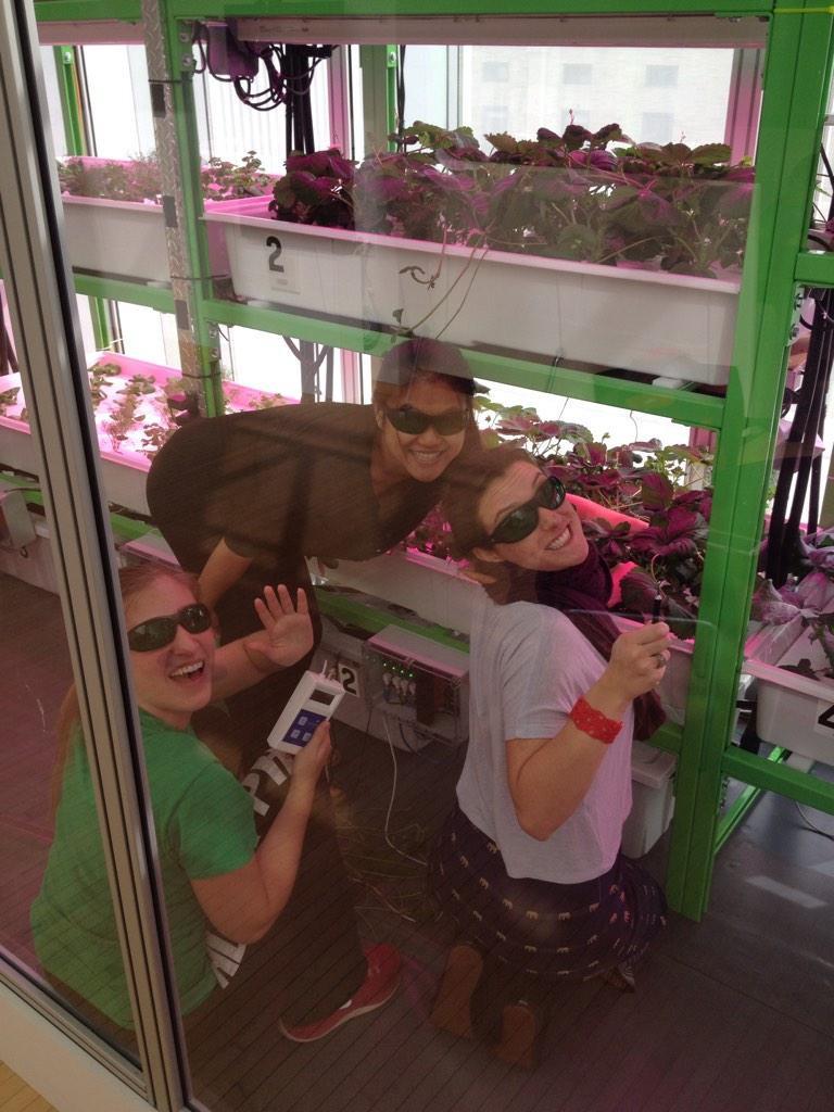 cityfarm working in farm.jpg