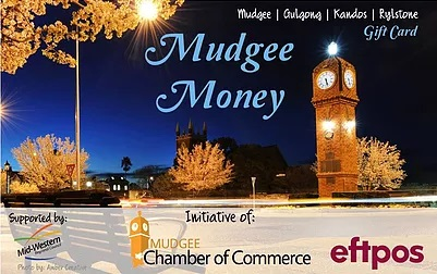 Logo Mudgee Money card.jpg