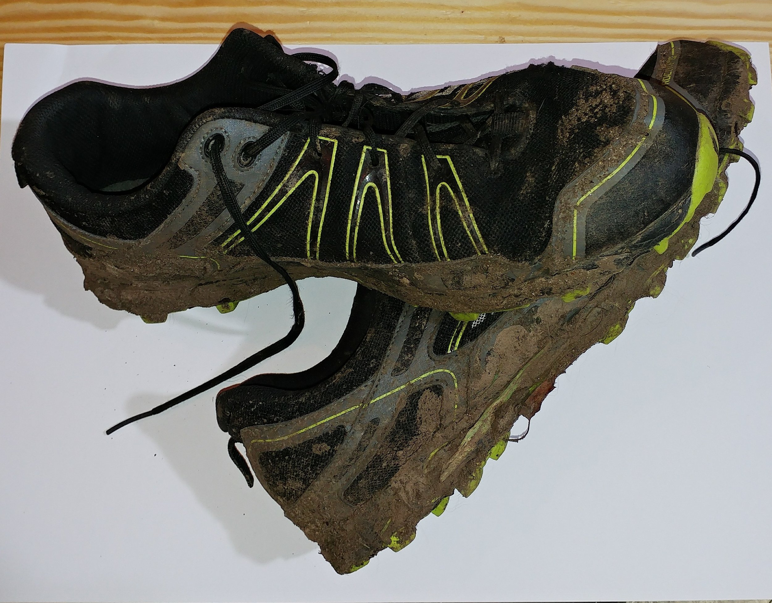 My trusty pair of Inov8 Roclite 295s - well broken in!