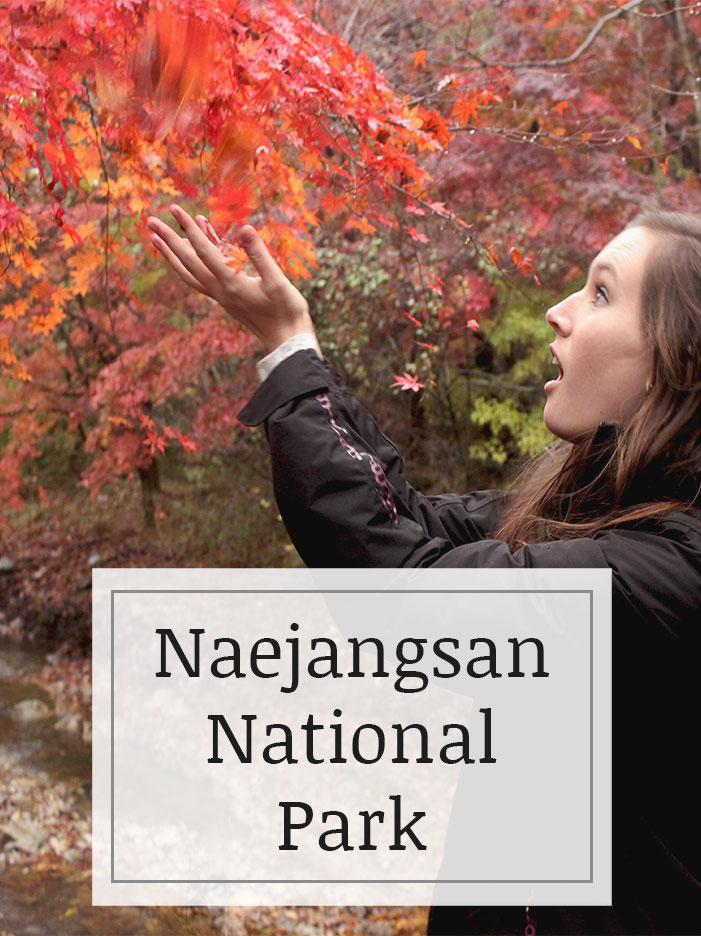 Naejangsan-National-Park.jpg