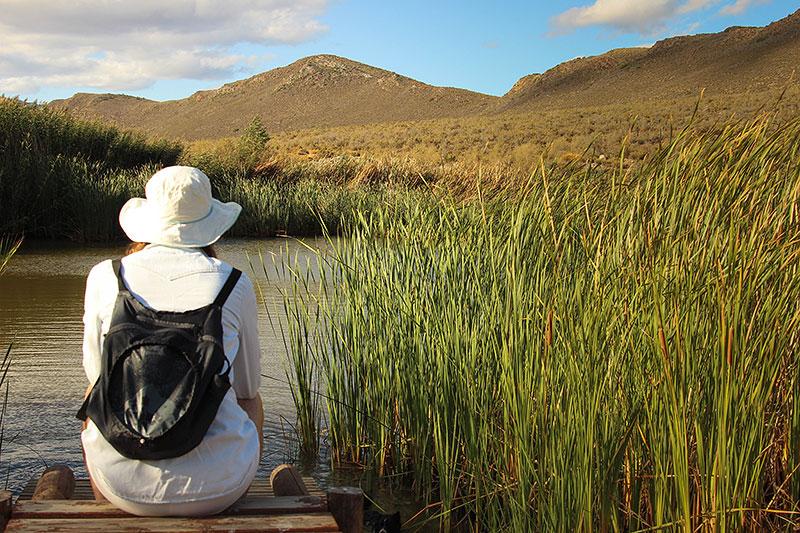 Weekend_Getaways_near_Cape_Town_Simonskloof_Budget_Getaways_swimming.jpg