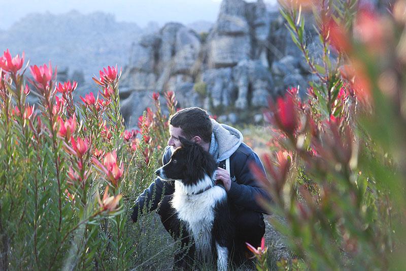 Weekend_Getaways_near_Cape_Town_Groot_Winterhoek_Budget_Affordable_Activities_Porterville_mountains_.jpg