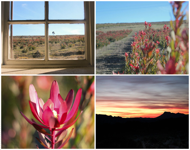Weekend_Getaways_near_Cape_Town_Groot_Winterhoek_Budget_Affordable_Activities_Porterville_mountains_10.jpg