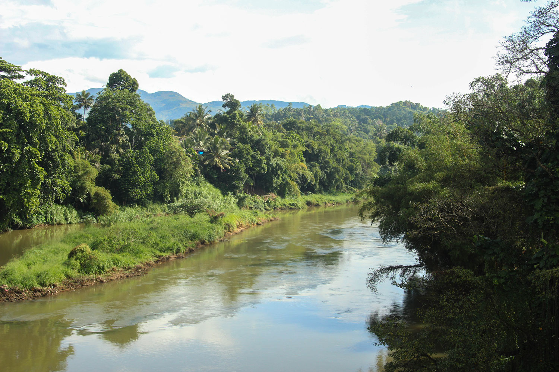Sri_Lankan_Travel_Guide_Itinerary_Budgeting__From_Kandy_to_Ella_11.jpg