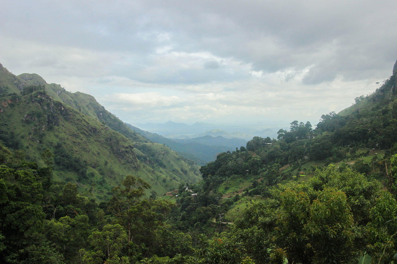 Sri_Lankan_Travel_Guide_Itinerary_Budgeting__Ella_Hiking_Adam's_Peak_Where_to_stay__ella's_edge_resort.jpg