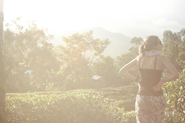 Sri_Lankan_Travel_Guide_Itinerary_Budgeting__Ella_Hiking_Adam's_Peak_Where_to_stay_13.jpg