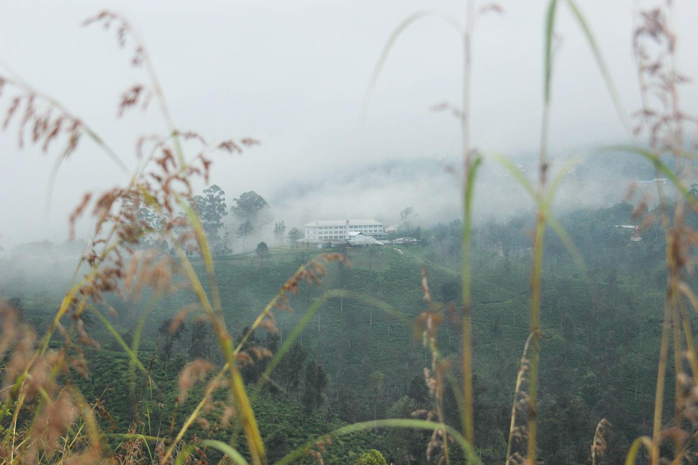 Sri_Lankan_Travel_Guide_Itinerary_Budgeting__Ella_Hiking_Adam's_Peak_Where_to_stay_1.jpg