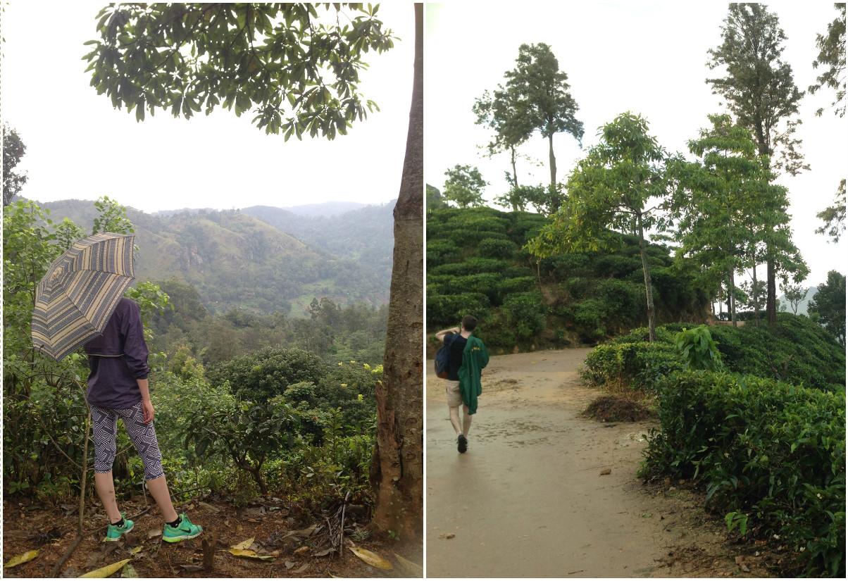 Sri_Lankan_Travel_Guide_Itinerary_Budgeting__Ella_Hiking_Adam's_Peak13.jpg