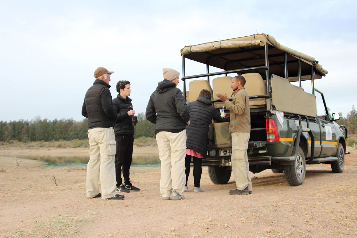 Why_Visit_the_kruger_national_park_in_south_africa_bush_drive.jpg
