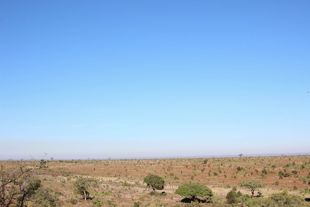 Why_Visit_the_kruger_national_park_in_south_africa_6.jpg