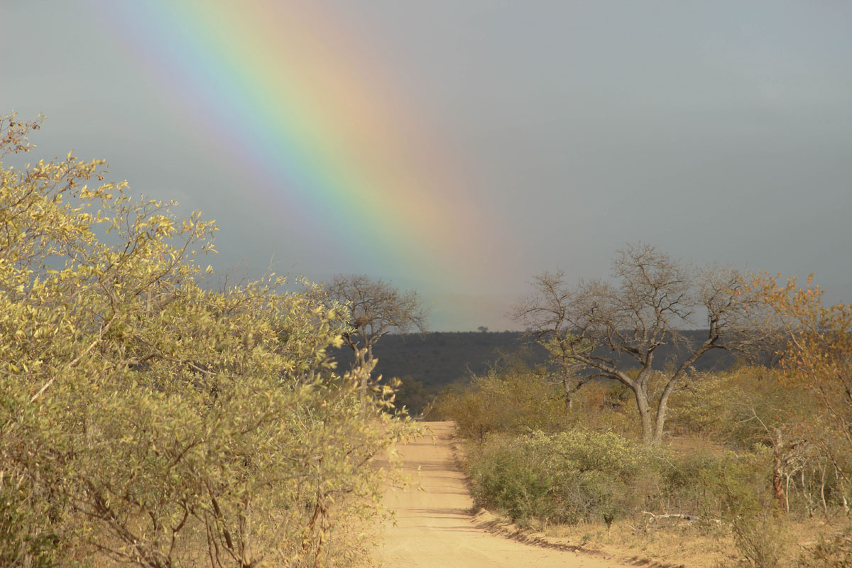 Why_Visit_the_kruger_national_park_in_south_africa_rainbow.jpg
