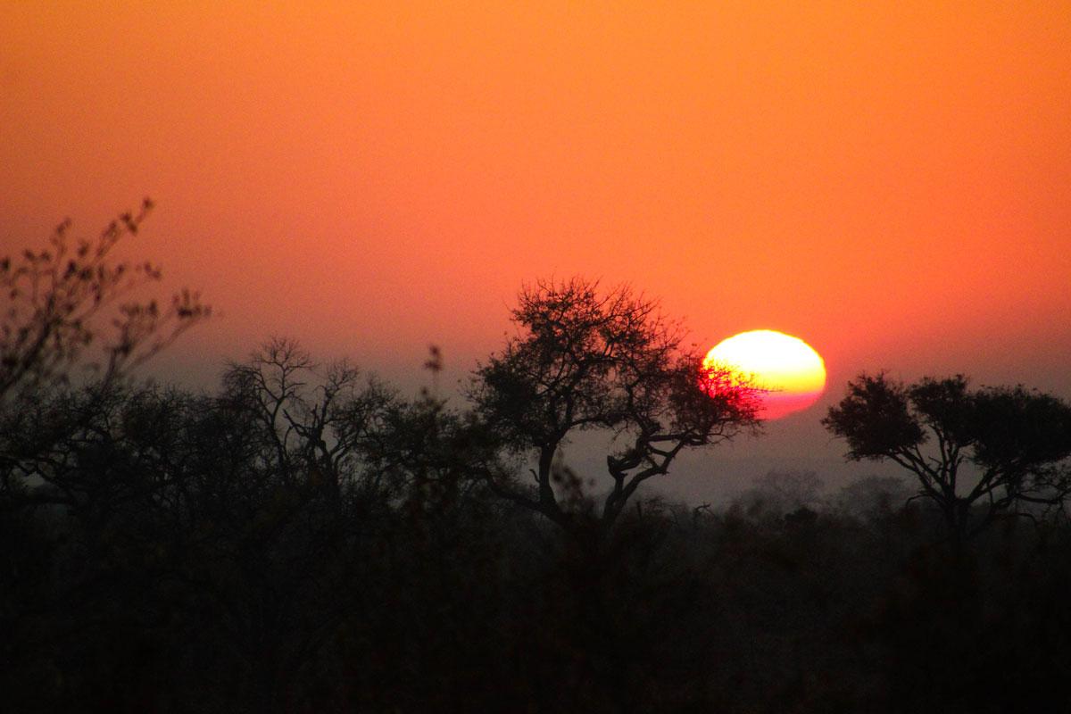 Why_Visit_the_kruger_national_park_in_south_africa_skie.jpg