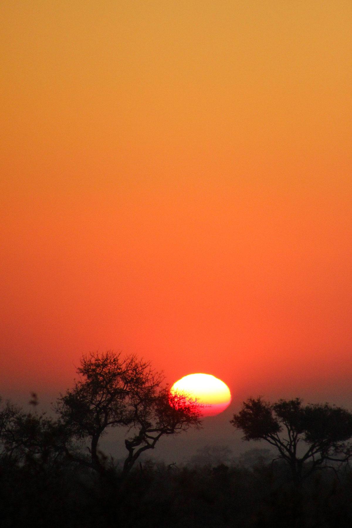 Why_Visit_the_kruger_national_park_in_south_africa_sunrise_3.jpg